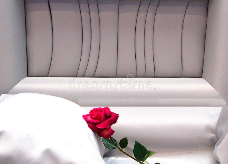 Open Casket with red rose stock photography
