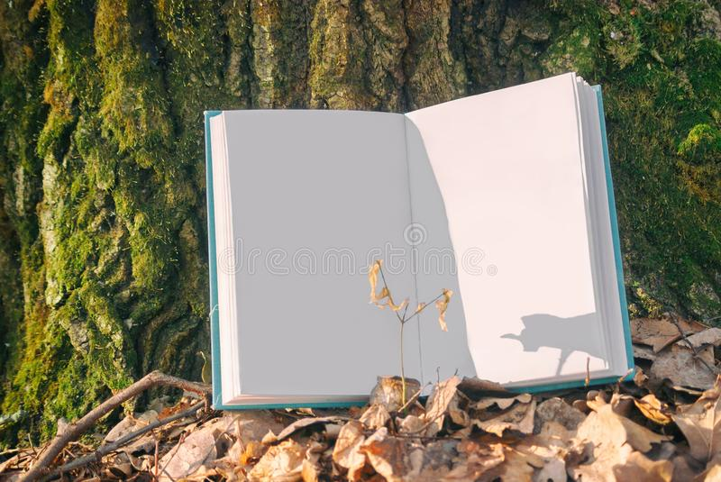 Open clean empty book in blue bound lying on a dry leaves. Background texture bark tree in spring nature forest. Turn pages copyspace sunlight royalty free stock images