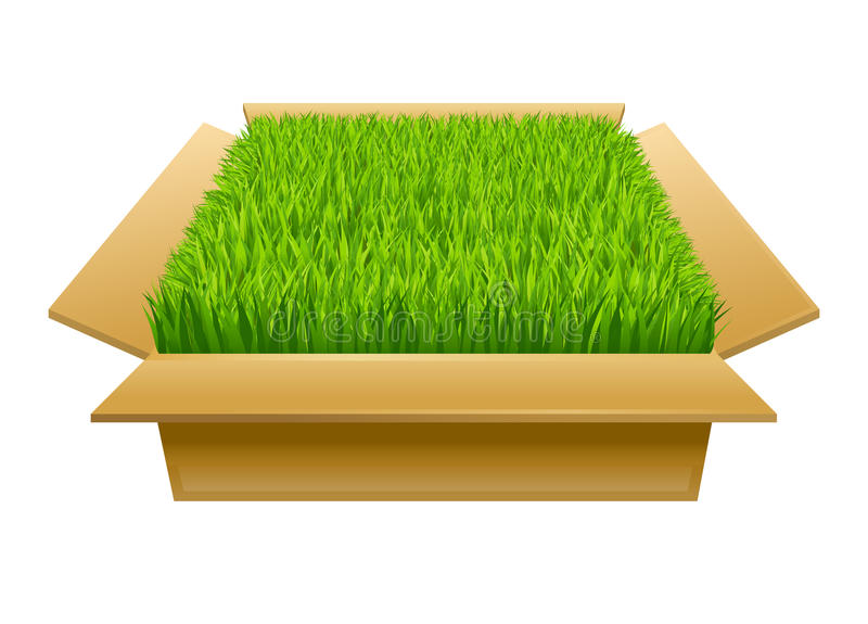 Open doos met groen gras vector illustratie