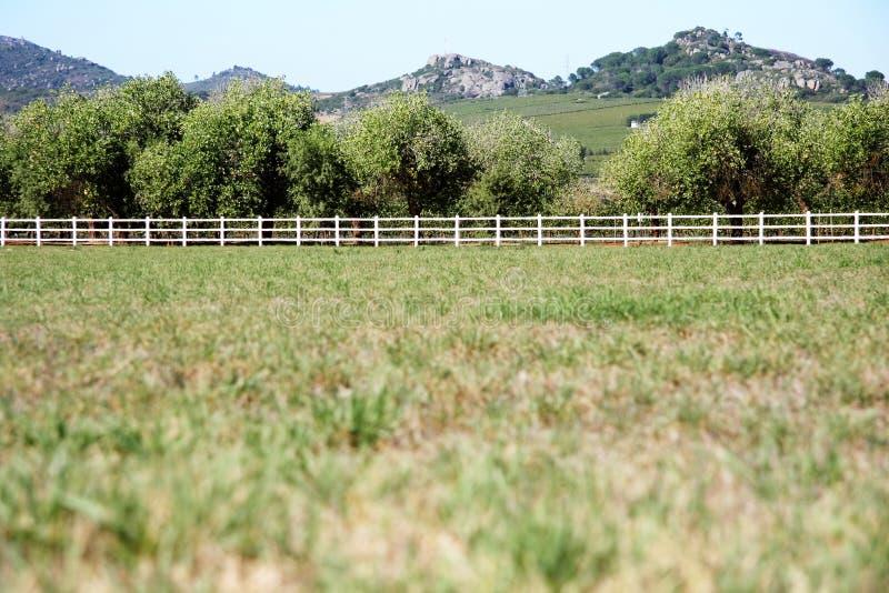 Open farm field. Portrait of wide open farm field royalty free stock photos
