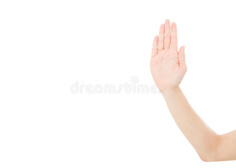 Open female hand show the stop sign isolated on white background,mock up.  royalty free stock photo