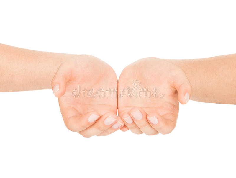 Open female hands on an isolated stock image