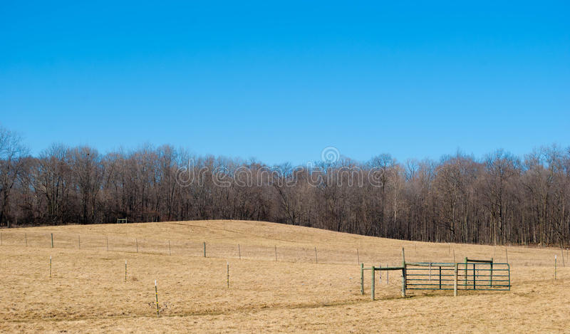 Open Field. With fences and treeline royalty free stock photo