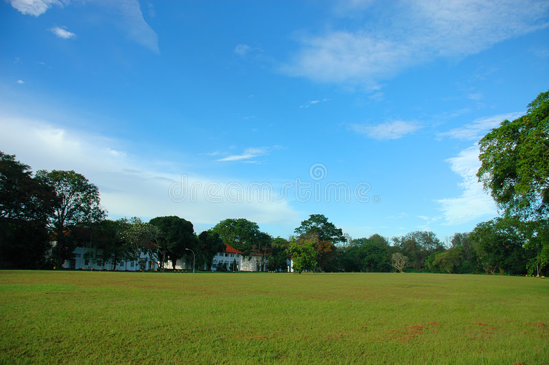 Open Field. And Blue Sky royalty free stock photos