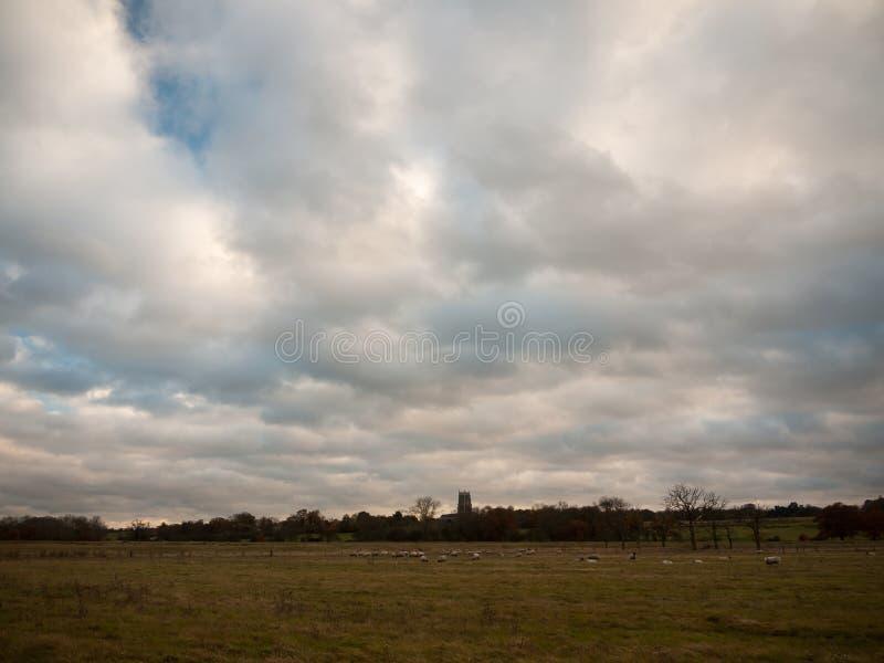 Open field plain autumn grass land sheep church england stock photography