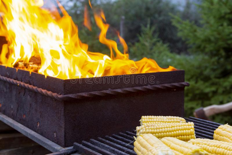 Open fire in grill, barbecue for cooking sweet fresh corn in backyard outdoors, vegetarian food stock image