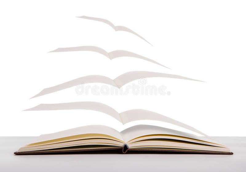 Open flying books royalty free stock photo