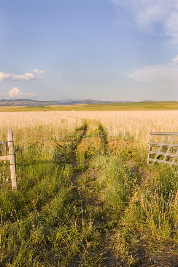 Free Open Gate To A Field With Clear Skies And A Small Shed Royalty Free Stock Image - 953756