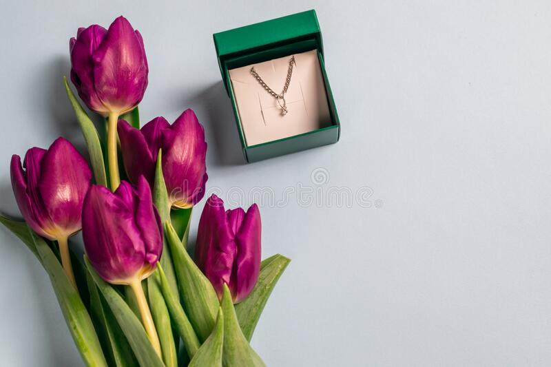Open gift box for jewelry with a chain and pendant made of silver and fresh bright purple tulips on a pale blue background with royalty free stock photo