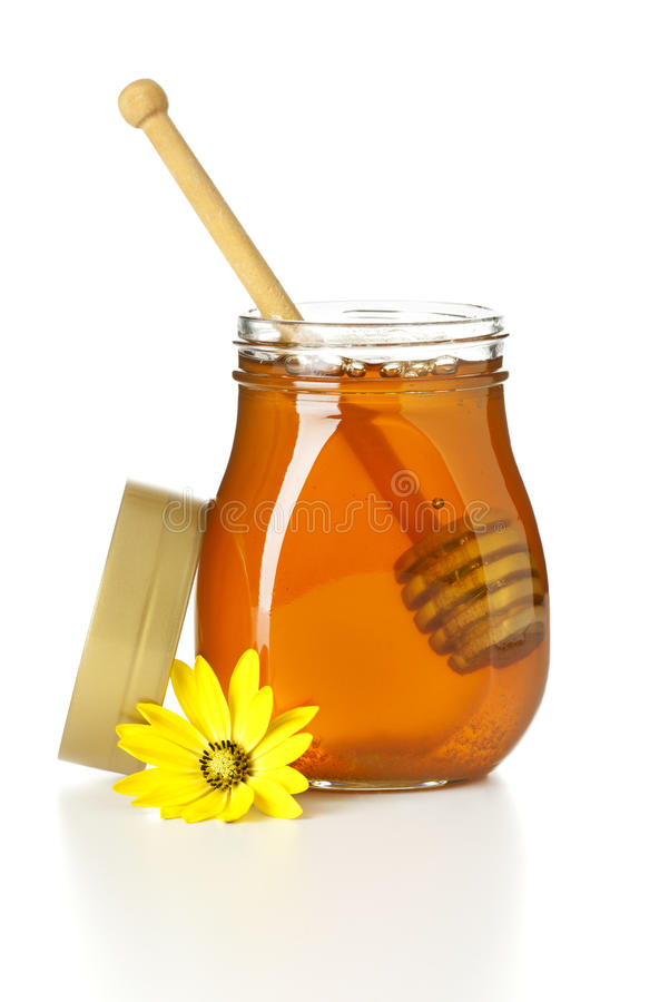 Open honey jar with dripper. Opened honey jar with dripper inside, lid and yellow flower aside, isolated on white royalty free stock photography