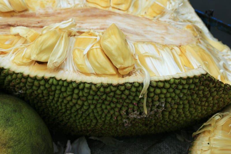 Open jackfruit royalty-vrije stock fotografie