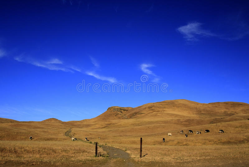 Download Open Land stock photo. Image of cloud, summer, blue, mountain - 27206234