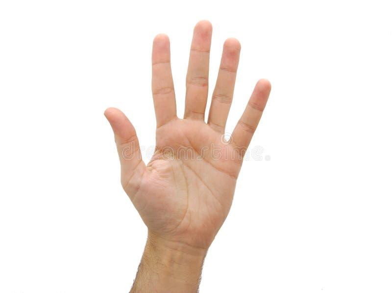 Open mensenhand Nummer vijf geïsoleerd gebaar royalty-vrije stock afbeeldingen
