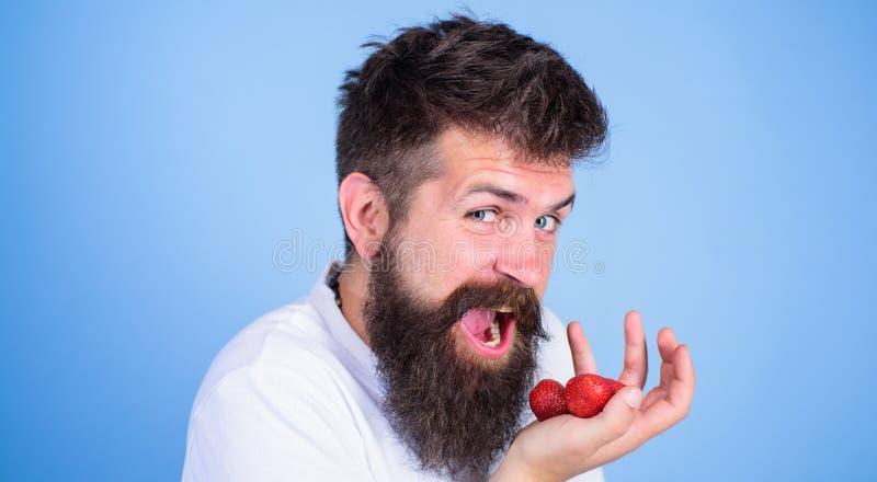 Open mond van het mensen eet de gelukkige gezicht met baard aardbeien Wil mijn bes gebaarde Hipster proberen houdt aardbeien op p stock afbeelding