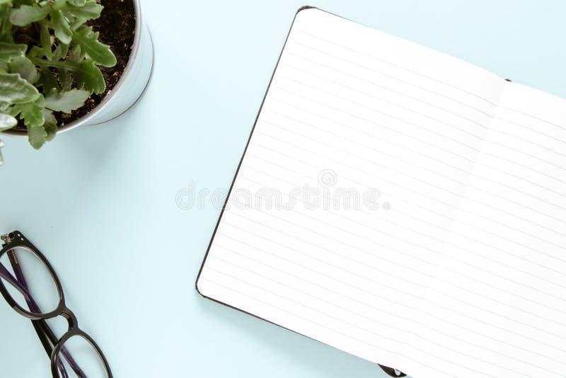 Open noot, witte pagina's, bril, groene bloem Studie- en werkconcept Vlek stock foto's