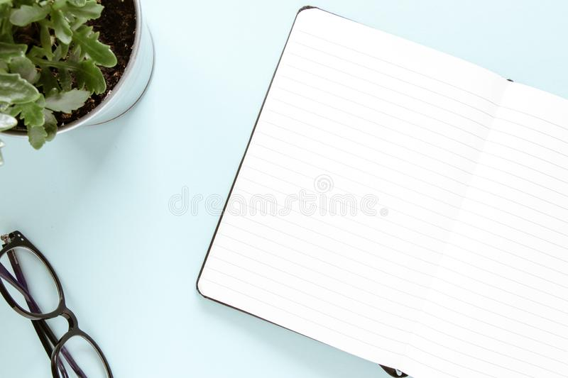 Open note, white pages, glasses, green flower. Study and working concept. Flat lay royalty free stock photography
