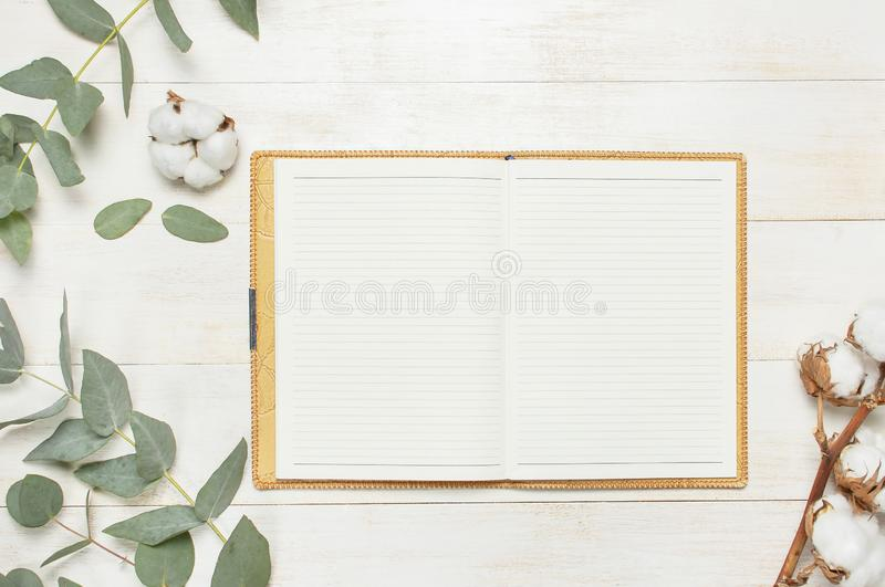 Open notebook with blank pages, pen, eucalyptus twig and cotton flowers on white wooden background top view flat lay. Fashion stock photos