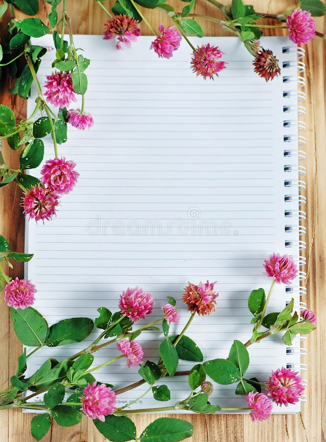 Download Open notebook and clover stock photo. Image of clover - 25535204