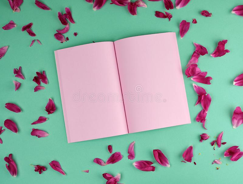 Open notebook with pink blank pages, top view stock photos
