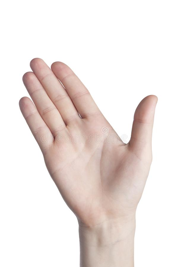 Open palm with waving on white background. Gesticulation with the help of hands royalty free stock photography