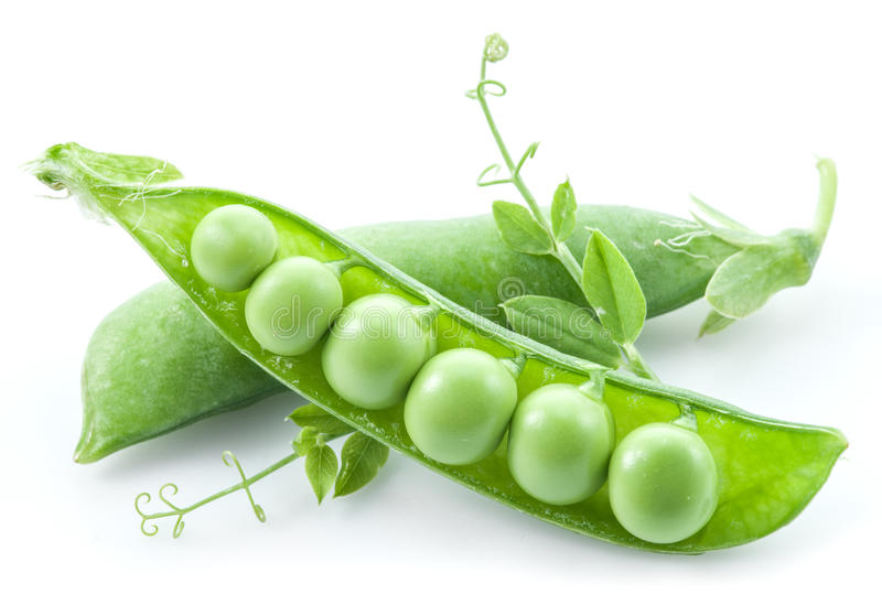 Open pea pod. stock images