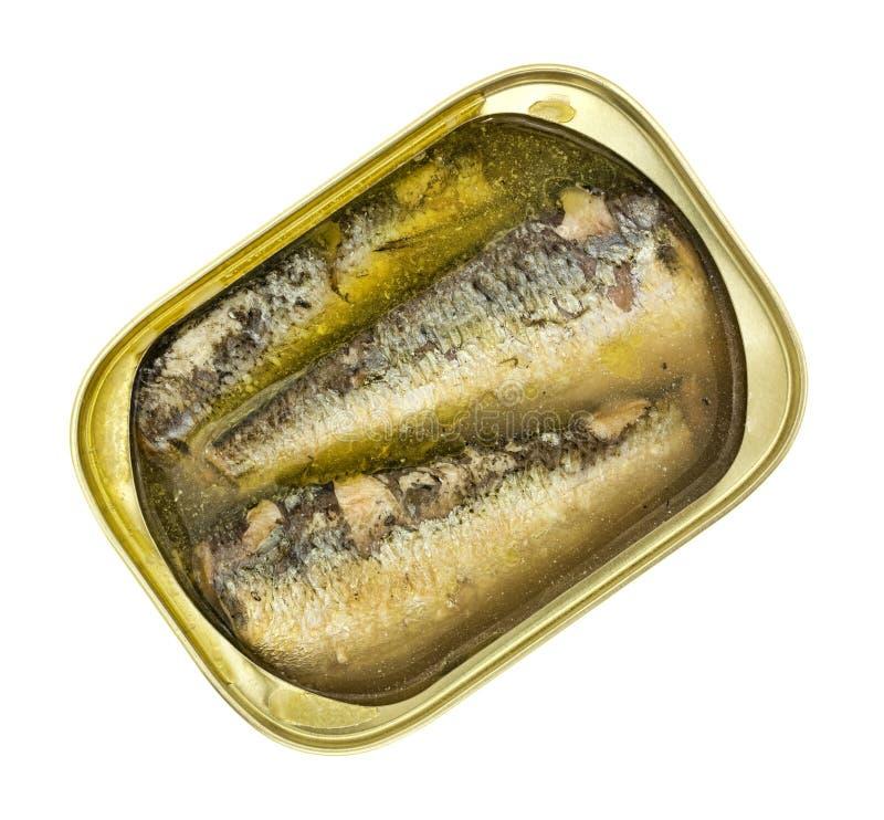 Open peut des sardines dans le pétrole et l'eau photos stock