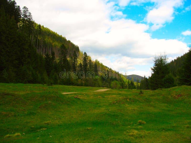 Open plek onder de bergketen royalty-vrije stock afbeelding