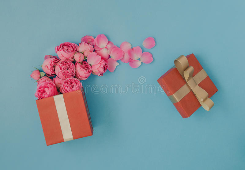 Open red gift box full of pink roses royalty free stock photography