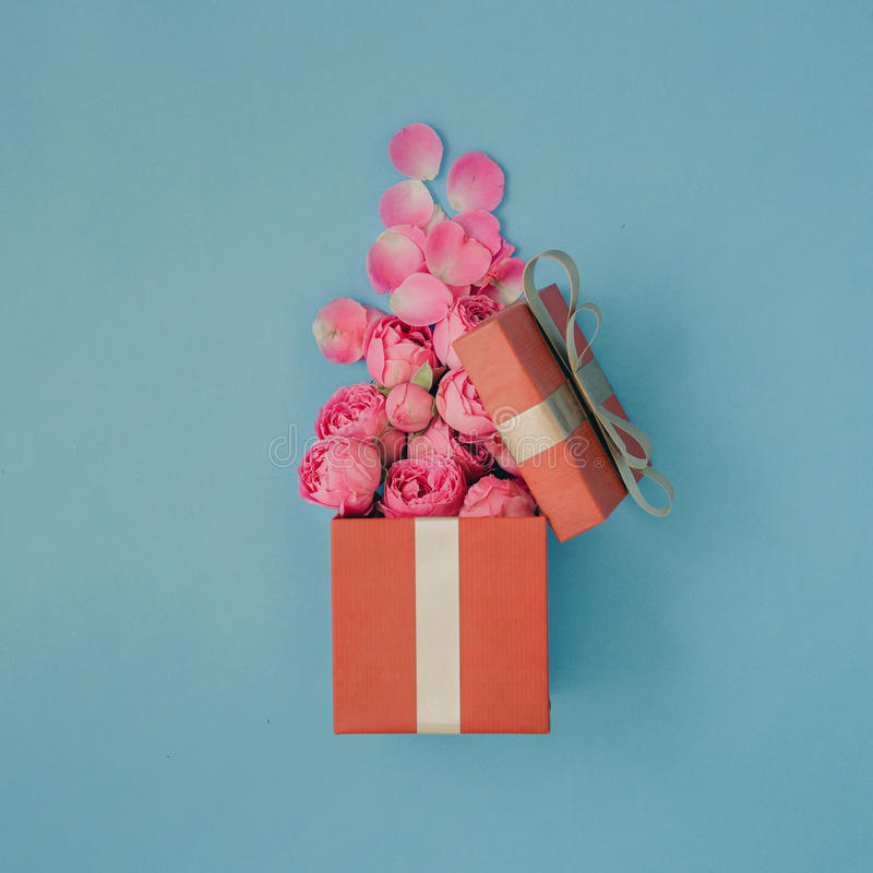Open red gift box full of pink roses royalty free stock photos