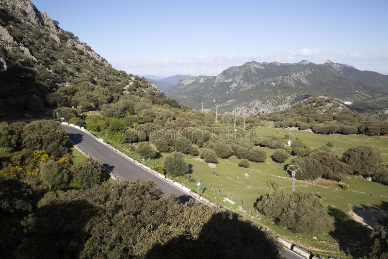 Open Road in Grazalema National Park royalty free stock photos