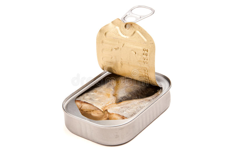 Open Sardine Can. Newly opened sardine can with lid peeled back royalty free stock photography