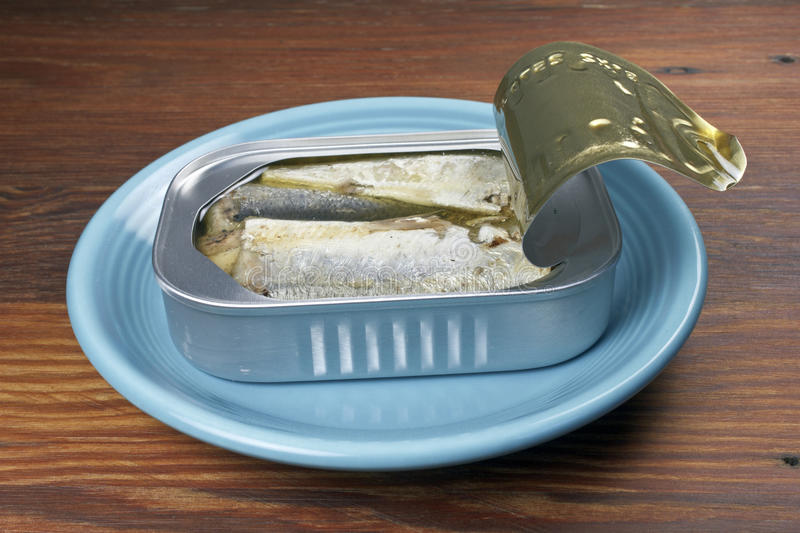 Open sardine can. With sardines on a blue plate stock image