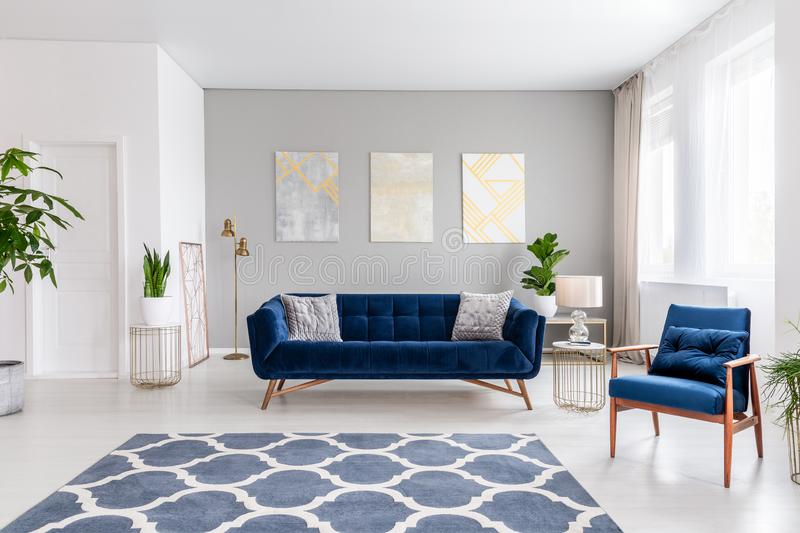Open space living room interior with a navy blue sofa and an armchair. Rug on the floor and graphic decorations on the wall. Real. Photo stock photos