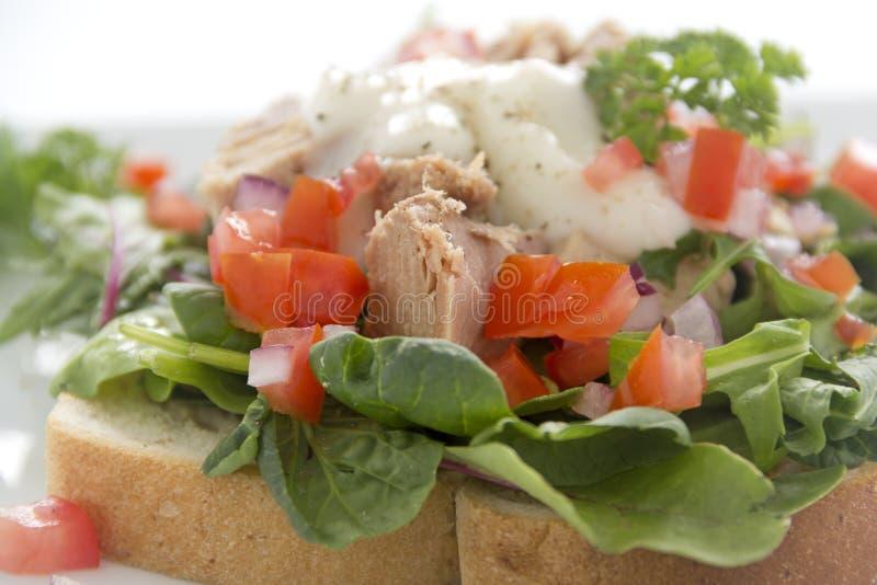 Open Tuna Salad Sandwich royalty free stock photos