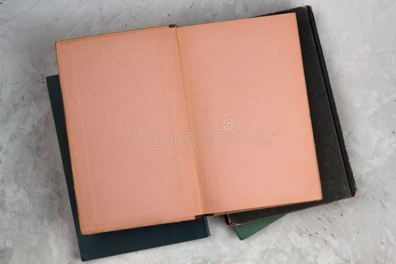 Open Uitstekend Boek met Blanco pagina's royalty-vrije stock foto
