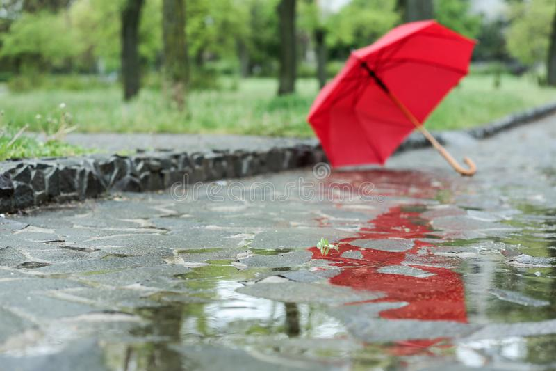 Open umbrella on city street. Rainy day. Open umbrella on city street, closeup. Rainy day stock image