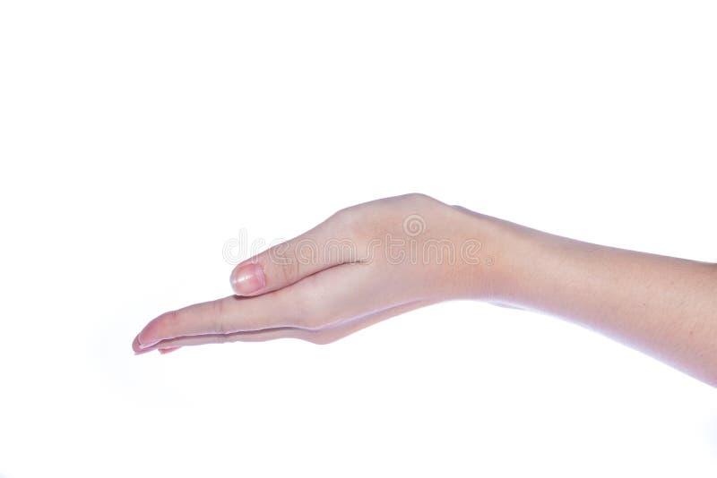 Open vrouwenhand op witte achtergrond stock fotografie