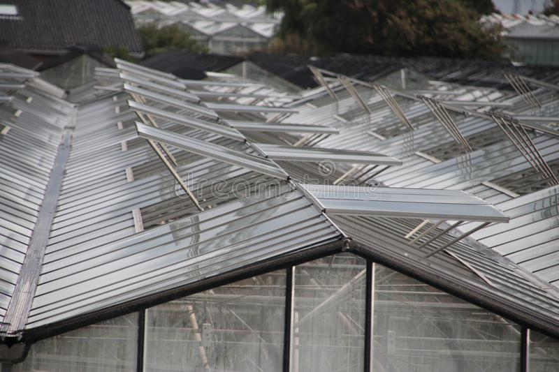 Open windows of greenhouses in a pattern in `s-Gravenzande, Westland, the Netherlands. Open windows of greenhouses in a pattern in `s-Gravenzande, Westland, the stock photo