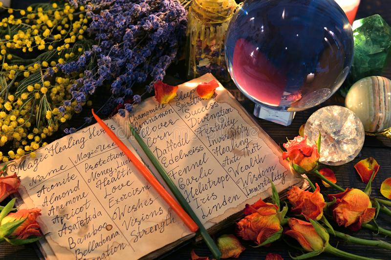 Open witch diary with names of healing herbs, crystal ball and flowers. Wicca, esoteric, divination and occult background with vintage magic objects for mystic royalty free stock images