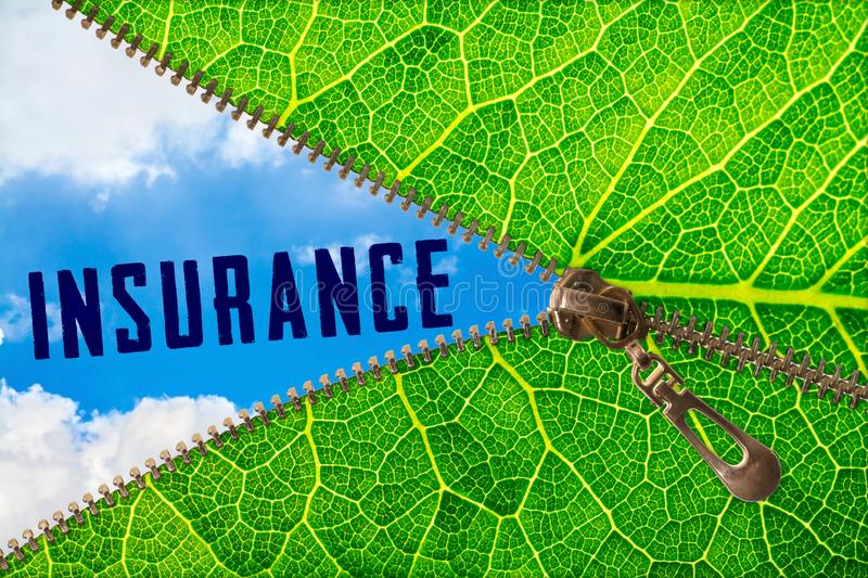 Insurance word under zipper leaf royalty free stock photos