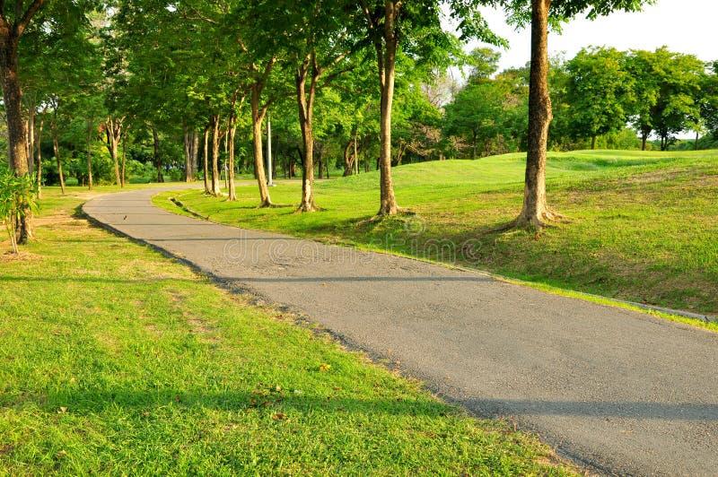 Openbaar park stock fotografie