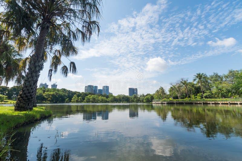 Openbaar park in de grote stad Plaats en in openlucht concept Aard en landschapsthema De plaats van Bangkok Thailand stock foto's