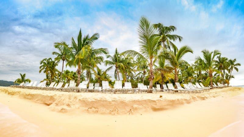 Openbaar strand met palmen stock afbeelding