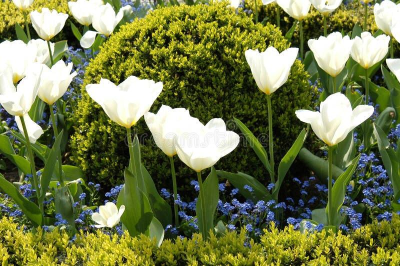 Openbare tuin stock afbeeldingen