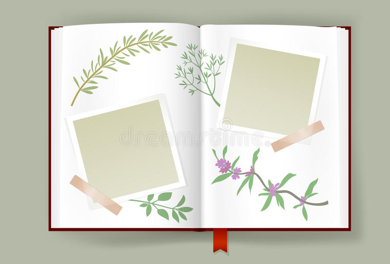 Opened Album With Blank Photo Frames And Aromatic Herbs. Overhead view of opened photo album with scraps of photo frames clipped on it. Different aromatic plants vector illustration