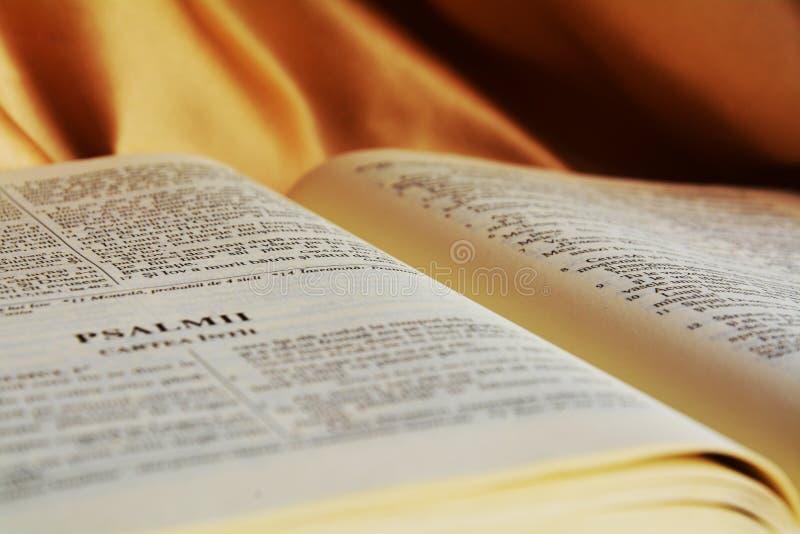 Opened Bible, religion royalty free stock image