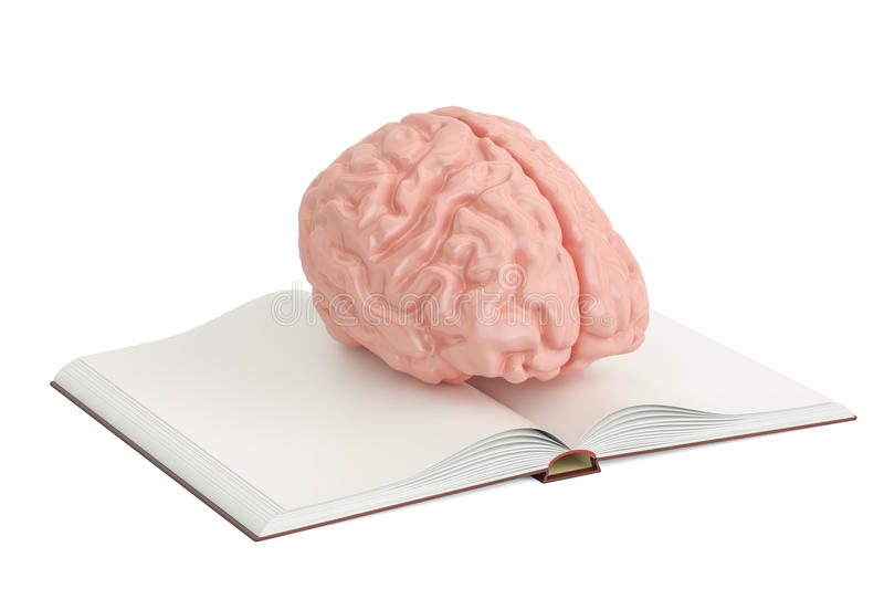 Opened blank book with human brain, 3D rendering royalty free illustration