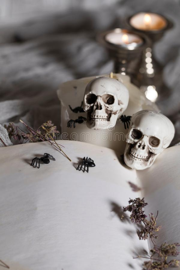 Opened book of bewitchment with free space for a text. Bewitchment symbols - skulls, herbs, candles, spiders in the background. Gray colors dominance royalty free stock image