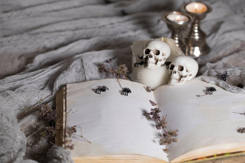 Opened book of bewitchment with free space for a text. Bewitchment symbols - skulls, herbs, candles, spiders in the background. Gray colors dominance stock photography