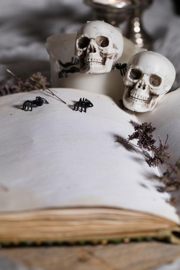 Opened book of bewitchment with free space for a text. Bewitchment symbols - skulls, herbs, candles, spiders in the background. Gray colors dominance royalty free stock photography